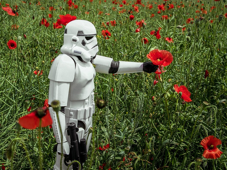 storm trooper with poppy