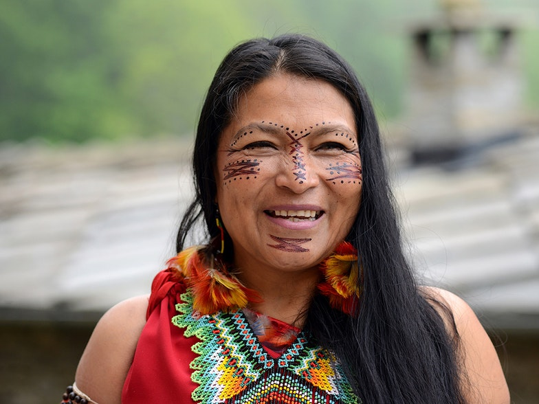 A journey towards Mother Earth: Listening to Indigenous voices in the Covid-19 pandemic
