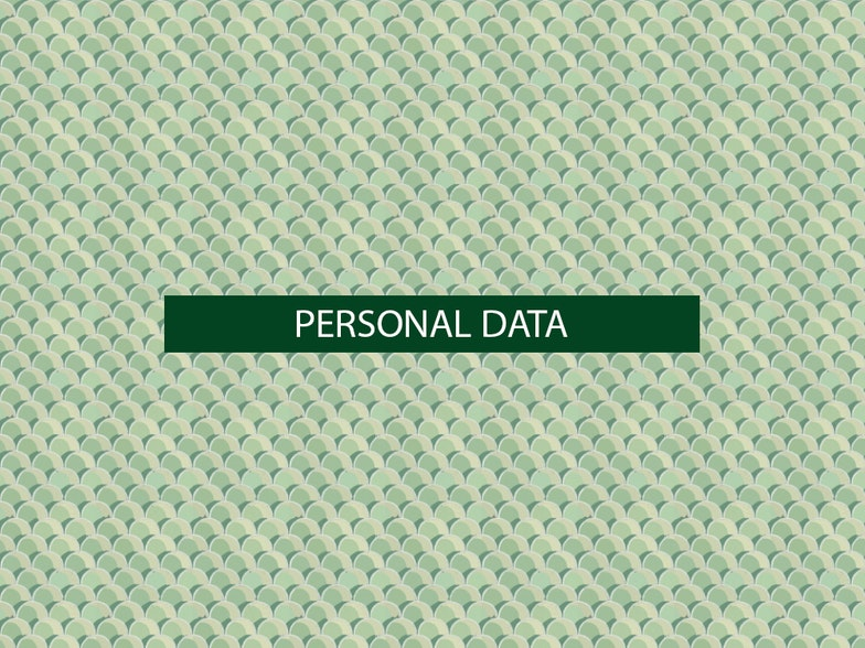 The 8th of all EU-r rights: Data protection and how the Charter contributes