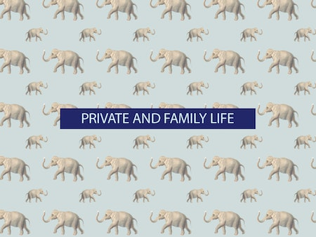 The 7th of all EU-r rights: Private life and how the Charter contributes