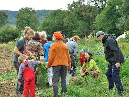Solawi: was hat Landwirtschaft mit Solidarität zu tun