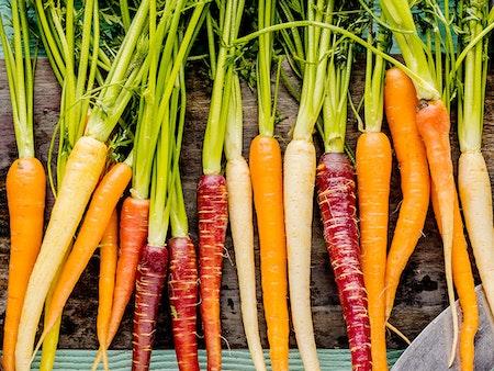 Regionale Produkte: Umweltschutz und bunte Vielfalt