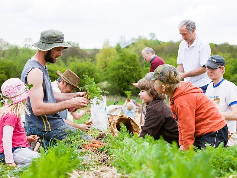 Community Supported Agriculture, Soziale Landwirtschaft CSA, Ellena Brandner, AgriCulture Eurac Reserach Blogs