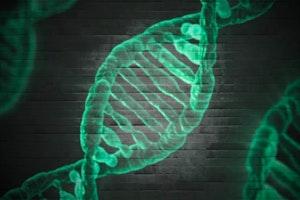 Gentechnik DNA DNS Strand Agriculture Eurac Research Blogs Jutta Staffler