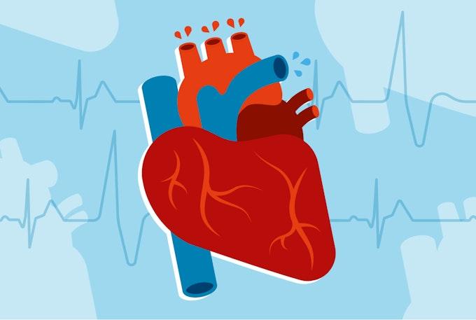 e+learning heart