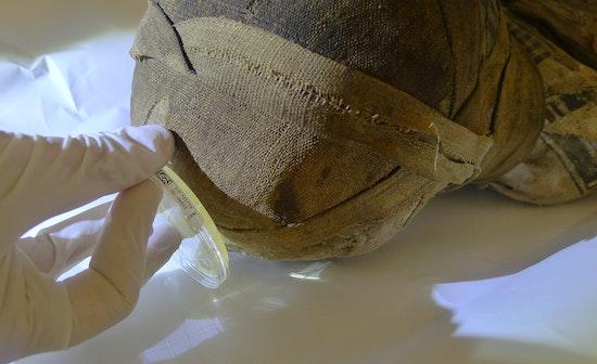 Mumien des Ägyptischen Museums in Turin in der Obhut von südtiroler Experten