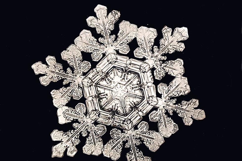 Schneesterne (Dendriten) bilden sich eher bei höheren Temperaturen aus.