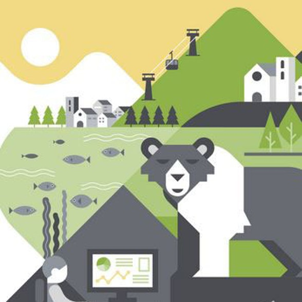 Venire a patti con … orsi e lupi? Cosa possiamo imparare dai conflitti uomo-fauna selvatica? Indicazioni dal workshop del progetto ALPBIONET2030