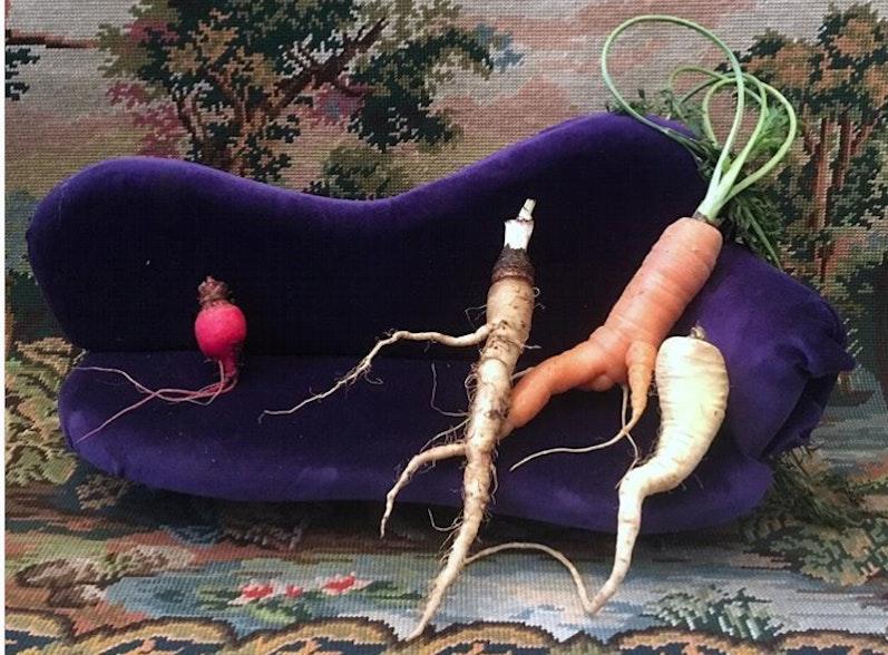 Ernährungsdemokratie und Re-Territorialisierung der Ernährungssysteme