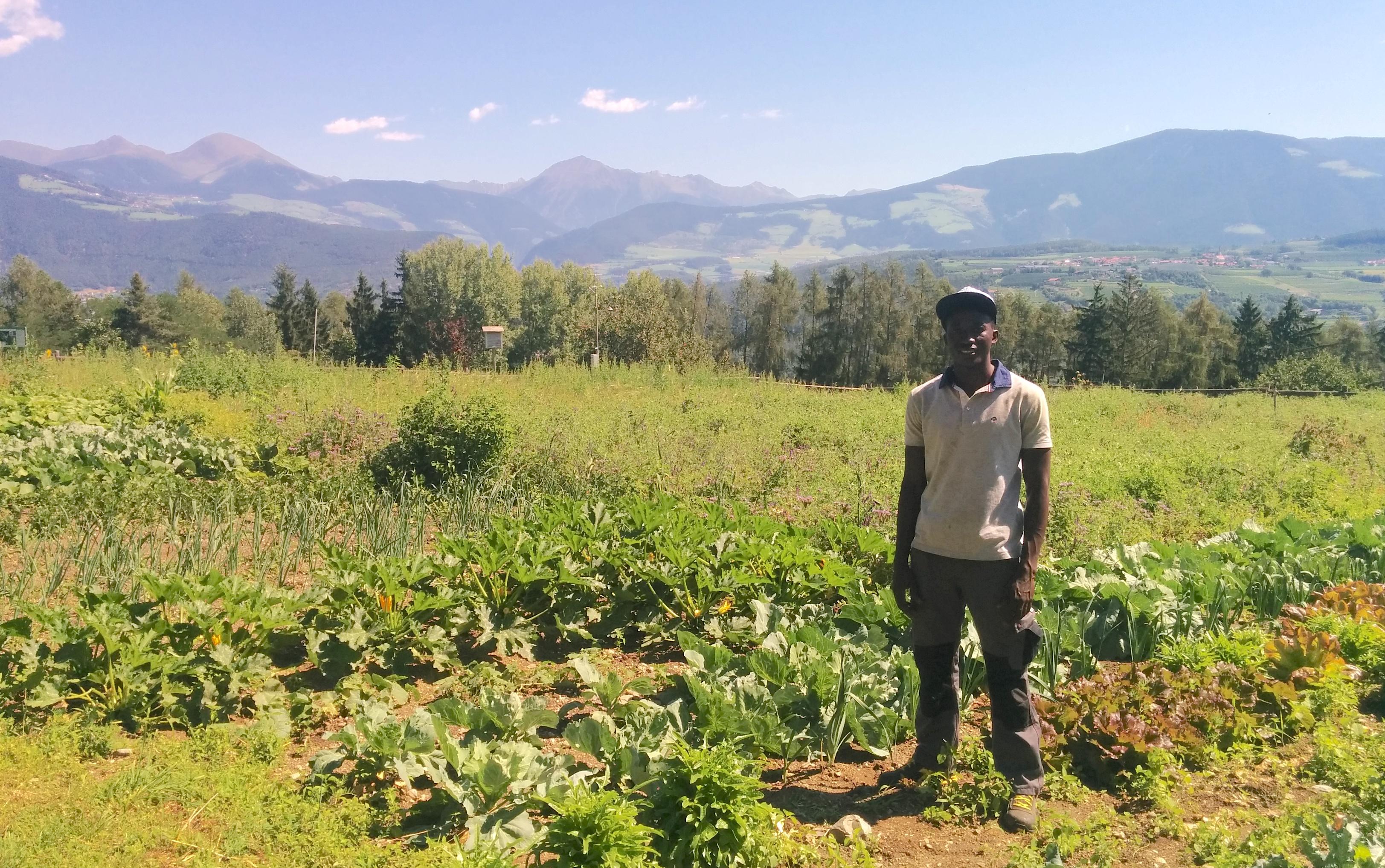 Integration und soziale Landwirtschaft
