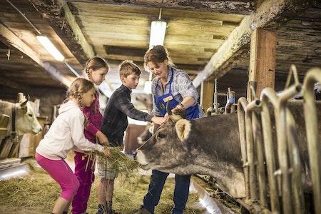 Südtiroler Bäuerinnenorganisation 2014