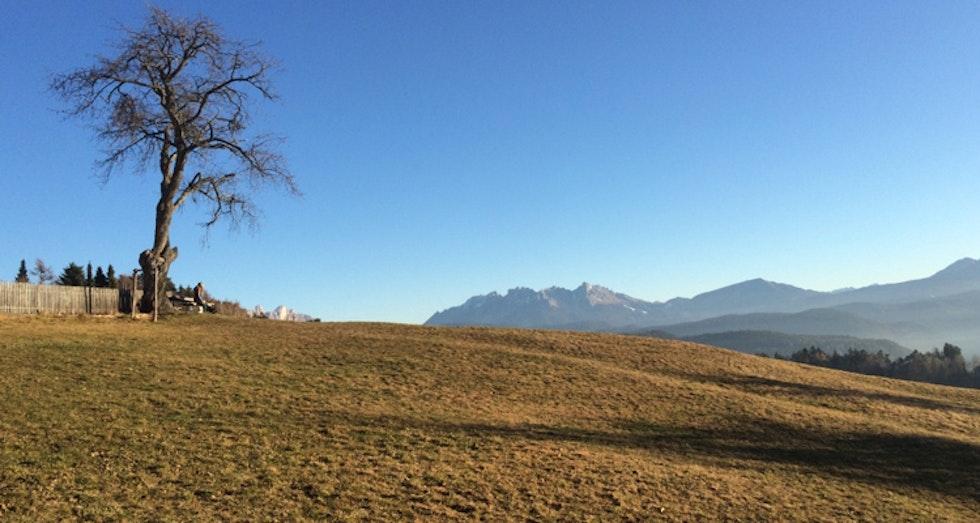 Hat der Klimawandel Südtirol erreicht? Vertrocknete Wiesen und weiße Striche in der Landschaft.