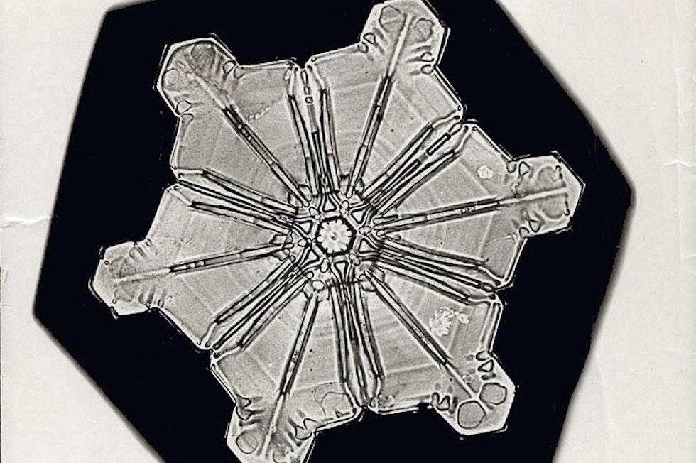 Der Amerikaner und Autodidakt Wilson Bentley, ein Pionier der Mikrofotografie, veröffentliche 1931 ein Buch mit 2400 Fotografien von Schneekristallen.
