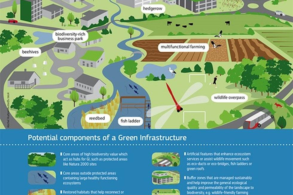 "Potenziali componenti di una ""green infrastructure"""