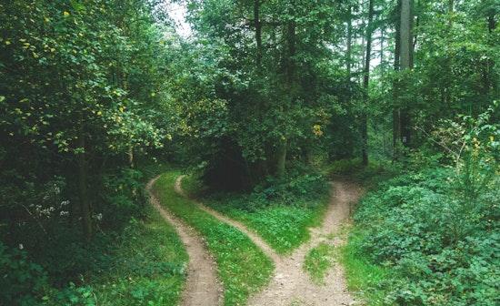 """""""Fiducia vuol dire condividere etica e obiettivi, non necessariamente il percorso"""""""