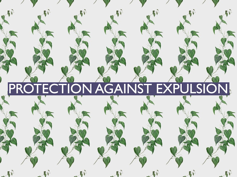 The 19th of all EU-r rights: protection against expulsion and how the Charter contributes