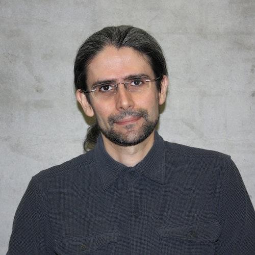 Francisco Manuel Lopes da Silva Domingues