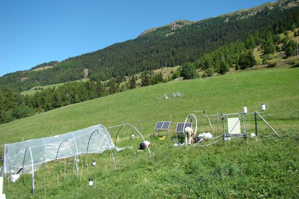 Institute for Alpine Environment
