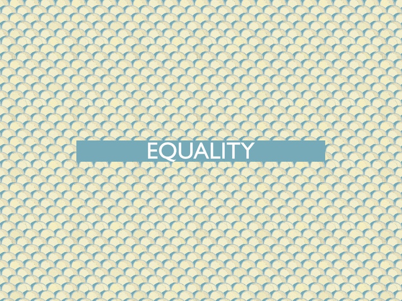 The 20th of all EU-r rights: equality and how the Charter contributes