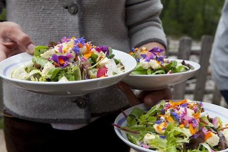 Lokale Produkte in Gastronomie und Hotellerie– Die Reise hat erst begonnen