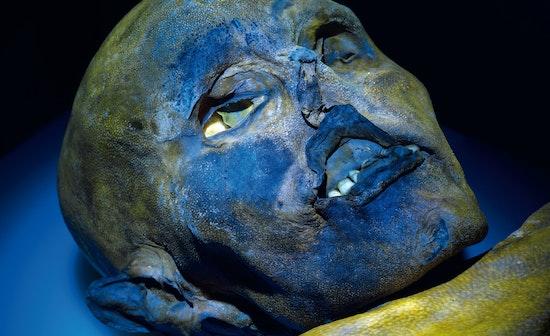 L'inchiostro di Ötzi